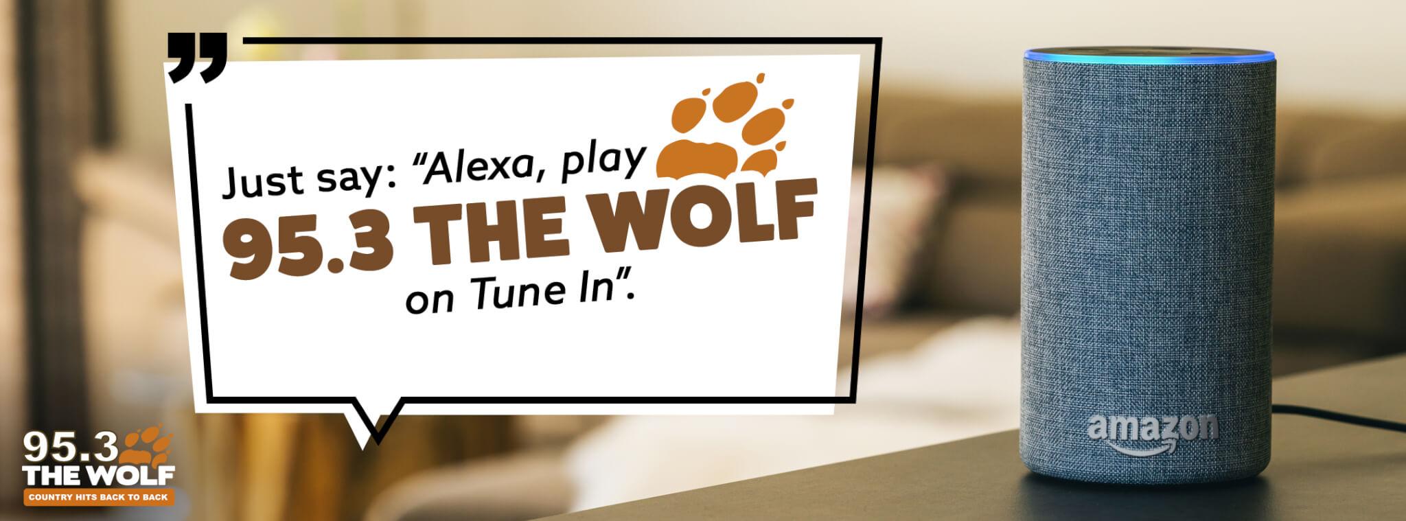 WOLF_Alexa-Slider_FINAL